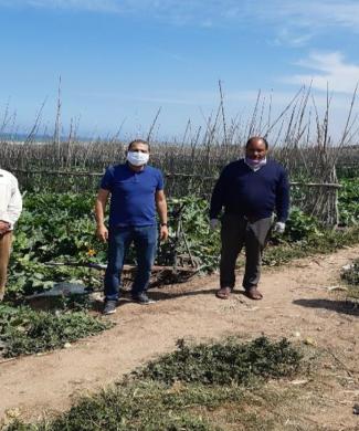 Jorf Agriculteurs